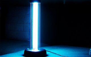 Кварцевая лампа для дома: критерии выбора, модели, цены