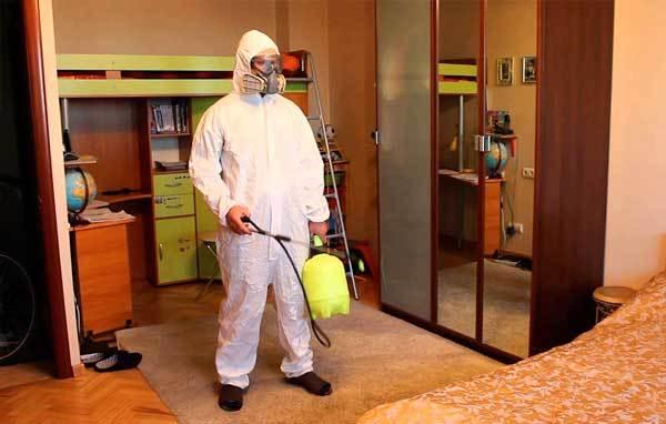 Как избавиться от тараканов в квартире навсегда: проверенные способы