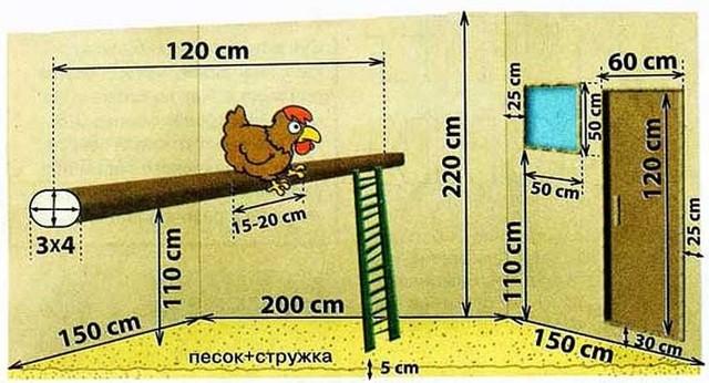 Зимний курятник на 20 кур своими руками: чертежи, этапы возведения
