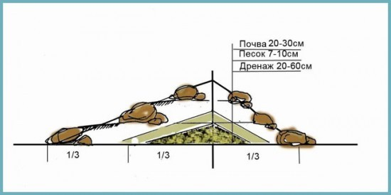 Альпийская горка своими руками: пошаговое фото, схемы и примеры