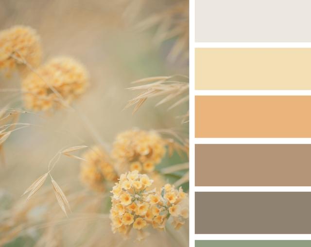 Бежевый цвет в интерьере: фото, рекомендации по оформлению